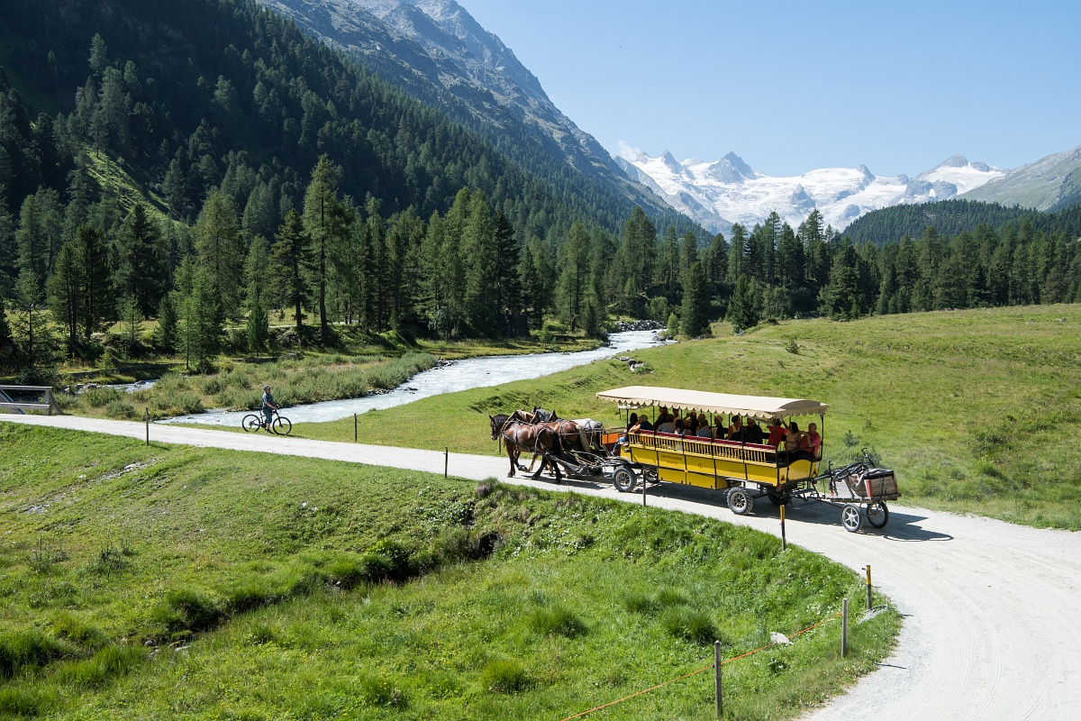 Group ride with a horse-drawn carriage in the beautiful valley