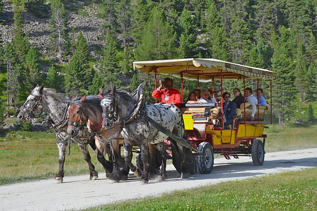 public horse-drawn omnibus on its way to the Roseg valley